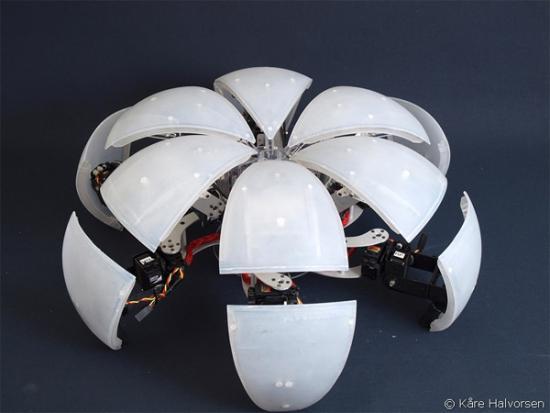 робот MorpHex